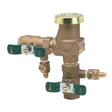 """Watts Freeze Resistant Vacuum Breaker - 3/4"""""""