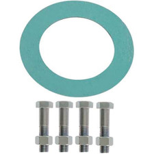 Superior Water Conditioner Companion Flange Bolt Kit & Gasket - 4""