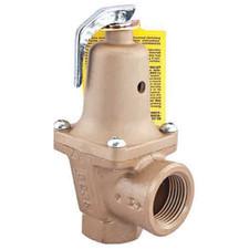 """Watts 740 Hot Water Pressure Relief Valve - 2"""", 30 PSI, 5,250,000 BTU/HR"""